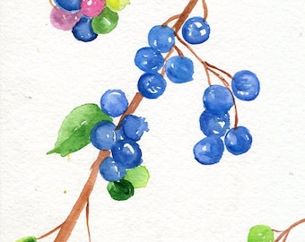 Blueberries Watercolors Paintings  original ART 5 x 7 Fruit watercolor, original watercolor painting of blueberries, blue kitchen decor