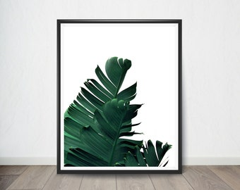 Palm leaf Digital Art, Art Print, Digital Art, Digital Art Print, Digital Artworks, Digital Print Art, Digital Art download