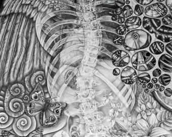Black and White Pencil Drawing Print, Bio-Mechanical Drawing Print, Graphite Pencil Art Print, Drawing Art Print, Scoliosis