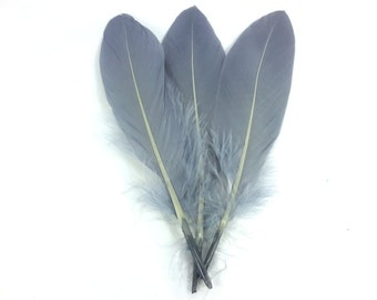 Single Silver Goose Feathers 10pcs x 15cm