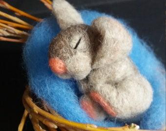 Bunny Sleeping