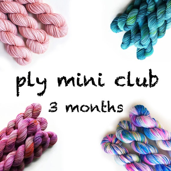 Hand Dyed Yarn Mini Skein Club 3 months