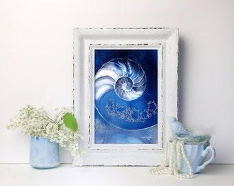Blue Nautilus Shell, INSTANT DOWNLOAD sea shell, nautilus shells, Ocean Beach Decor, Printable Art, Printables  by Kathy Morton Stanion EBSQ