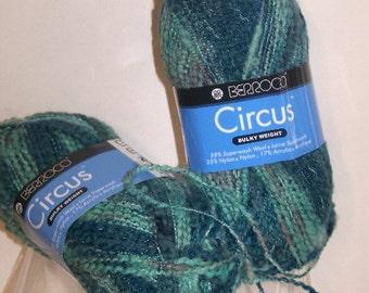 Berroco Circus Green/Turquoise Multi Wool Blend Yarn 2skeins