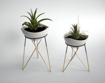 set of 2 geometric plant stands with a little white ceramic flower pots | himmeli | elegant geometric terrarium | metal brass soldered