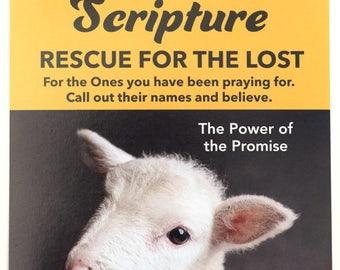Iron on Scripture for the Lost