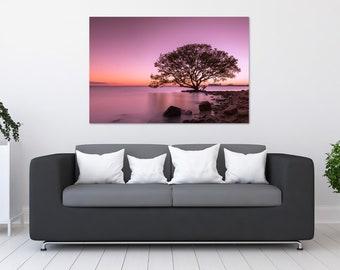 Calm Ocean Tree Sunset Photo Print | Wall Art | Nature and Landscape Photography | (5x7, 8x10, 12x18, 16x24, 20x30, 24x36, 40x60)
