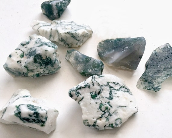 Moss Tree Agate Lot, Eight Tree Agate Pieces, 8 Moss Agate Stones Shards Pieces, Tree Agate for Crafting, Tree Agate Chunks, Rock Collection
