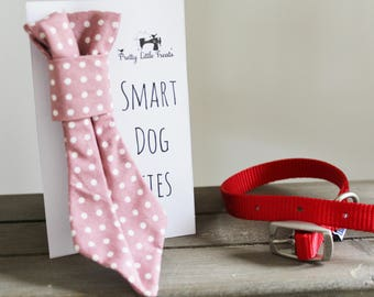 Rose Pink Polka Dot Handmade Smart Dog Tie