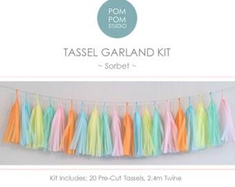 DIY Tassel Garland Kit | Sorbet