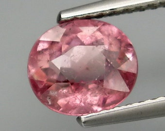 Pink Purple Tourmaline - 1 Piece (318)