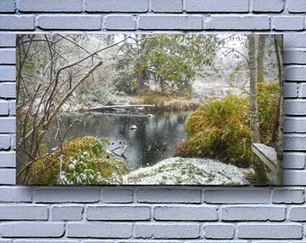 First Snow At The Beaver Dam