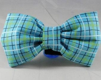 Dog Flower, Dog Bow Tie, Cat Flower, Cat Bow Tie - Lunchbox in Blue