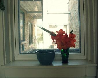 flower photography, nature, flower art print, orange gladiolas, vintage kitchen photo, green glass, window, back porch, retro, wall art