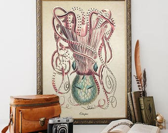 Antique Botanical Wall Art Octopus Print Sealife Giclee Vintage Natural History Nautical Art Decorative Sea Life Reproduction SL022