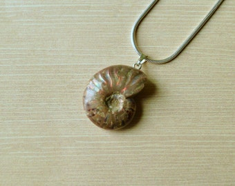 Opalescent Ammonite Pendant // Ammonite Jewelry // Fossil Jewelry // Sterling Silver // Village Silversmith