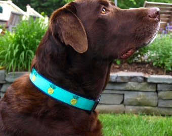 Pineapple Collar / Summer Collar / Pineapple Dog Collar /  Adjustable 1.25 Inch Wide Med/Large ONLY
