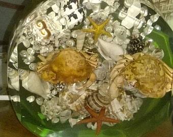 Vintage stunning 1950s/1960s  lucite lamp incased crab,seashell,starfish.
