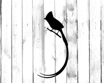 Long Tailed Bird - Home/Phone/Computer/Laptop/Car Bumper Sticker Decal