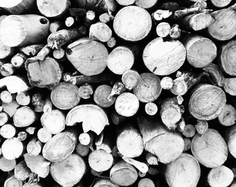Winter Wood - Log photograph, wood photograph, abstract photo, nature, woods, black and white,  winter photograph, winter art, rustic art