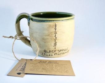 BC Black Spruce Mug (Raw Blackbird and Forest Green)