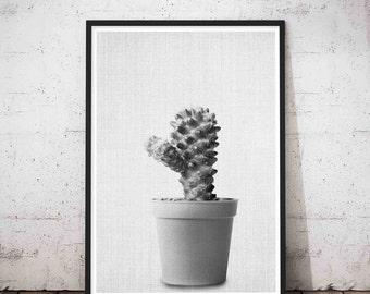 Cactus Art, Cactus Print, Cacti Print, Cactus Wall Art, Cactus Photography, Cactus Printable, Cactus Wall Decor, Cactus Wall Print, Poster