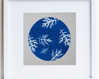 Botanical Art, original cyanotype