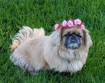 Pink dog Flower crown puppy floral neck collar photo prop bridal wedding hair wreath engagement halo wedding accessories family portraits