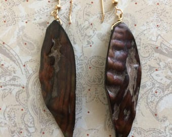 Bronze Shell Earrings Shield shape 0n 14k gold filled wire.