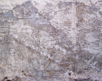 Rustic Cement Texture Digital Print Background Digital Image