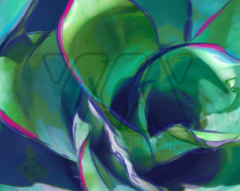 Blue Bromeliad