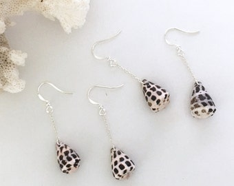 Small Hebrew Cone Shell Dangle Earrings