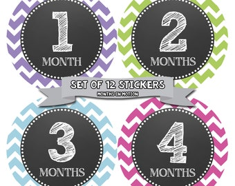 Baby Month Stickers Baby Monthly Stickers Girl Monthly Bodysuit Stickers Baby Shower Gift Photo Prop Baby Milestone Sticker 071