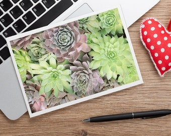 Succulent Card, Photo Notecard, Blank Greeting Card, Photo Greeting Card, Floral Photo Notecard, Stationery, Blank Notecard, Cactus Card