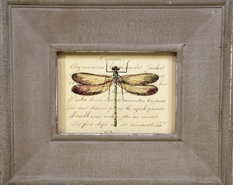 Dragonfly Framed Print * nature art * wall art * home decor * insects