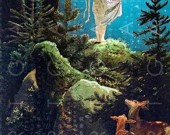 LITTLE GIRL Under A Starry Blue SKY. . Vintage Fairy Tale Illustration. Digital Fairy Download. Vintage Fairy Print.
