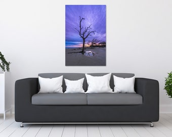 Driftwood Tree Sunset Photo Print | Wall Art | Nature and Landscape Photography | (5x7, 8x10, 12x18, 16x24, 20x30, 24x36, 40x60)
