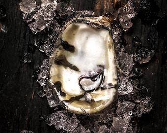 Food Photography, Oysters, Food Art, Still Life Photography, Home Decor, Wall Art, Restaurant Decor, Kitchen Art