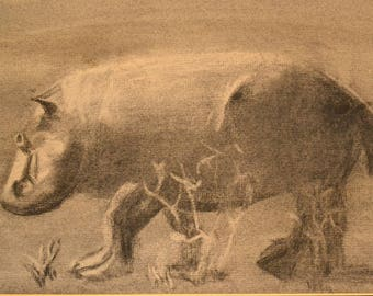 Vintage Charcoal, Graphite Pencil Drawing Sketch of a Hippo in a Field, Mid Century Design