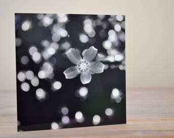 Christmas Lights Black And White Bokeh Blank Greetings Card 145 x 147 mm