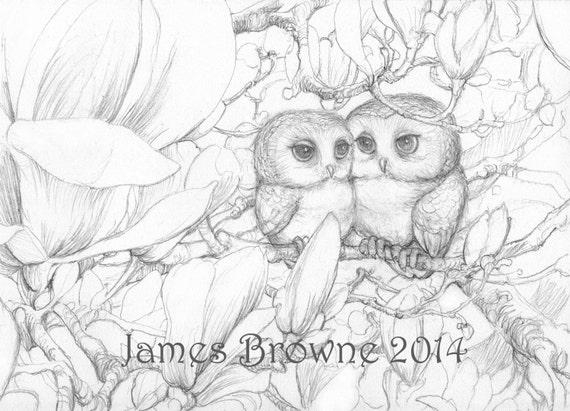 Love Owls Coloring Page, Printable Digital Download