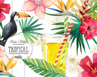 Exotic Clipart ,Watercolor Clipart ,Tropical Illustration, Hand Painted ,Palm Clipart Instant Download Clipart