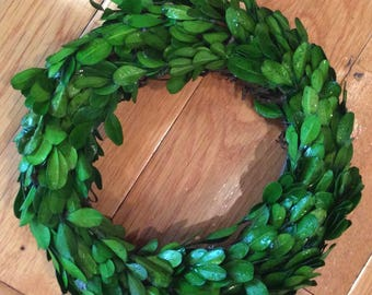 "10"" Preserved Boxwood Wreath"