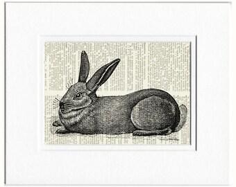 rabbit III dictionary page print
