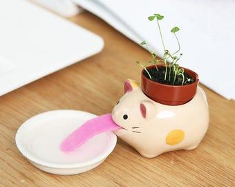 Cute MiNi Desktop Planting Small Potted Plant Creative Diy Green Plant Happy Planter