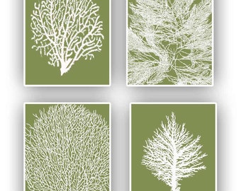 Sea Coral fan 8x10 prints, set of 4, in white on olive background, vintage inspired  by coral, gorgonian beach cottage decor