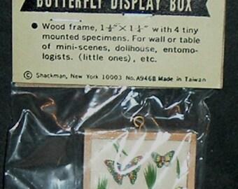 Miniature BUTTERFLY DISPLAY BOX (Shackman)