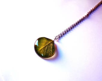 Real Birch leaf jewelry, gift woman pendant, Green natural gift Terrarium necklace, Green  leaf pendant Gift for vegetarian Eco gift for her