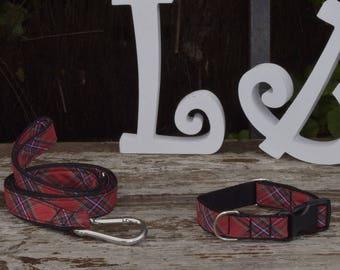 """Collar + leash """"Scottish"""" dog"""
