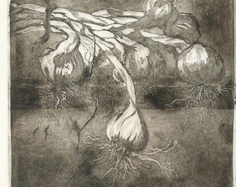 "Original Etching ""Garlic'"